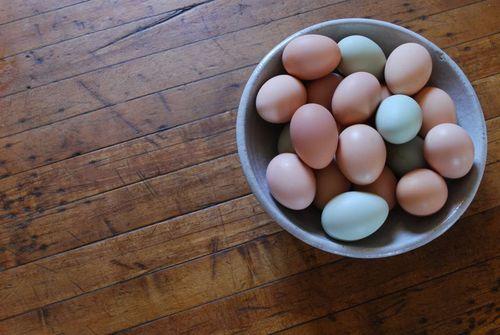 Undyed eggs